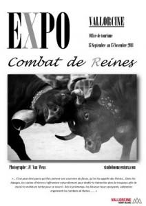 expo_vache
